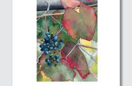 Berkeley Hort CA Wild Grape poster