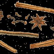 Spices: cinnamon stick, star anise + cloves