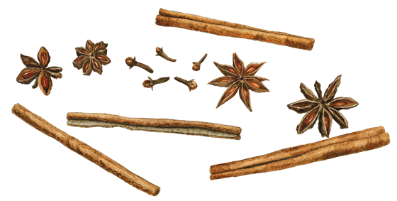 Cinnamon,-Star-Anise-+-Cloves