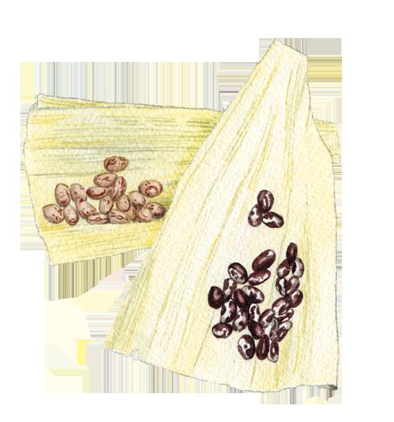 Corn-husks,-Borlotti-+-Anasazi-beans