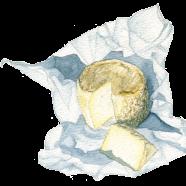 Crottin goat cheese