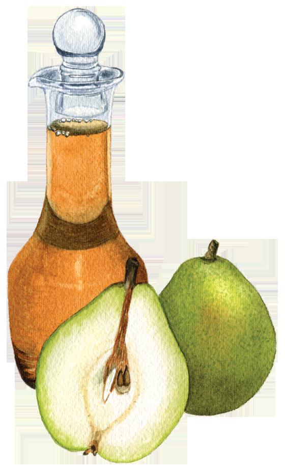 D'Anjou-pear-vinegar