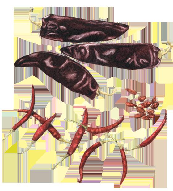 Guajillo,-Pequin-&-de-Arbol-chiles