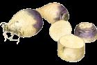 Laurentian rutabaga