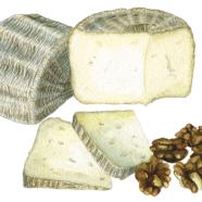 Shepherdista sheep cheese + walnuts