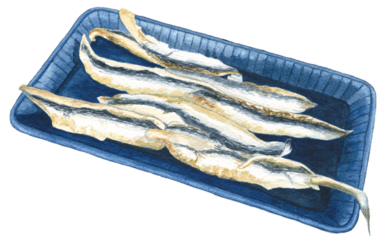 Spanish-boquerone-anchovies