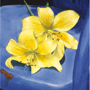 Yellow lilies on blue chair