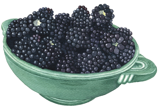 blackberries-in-bowl