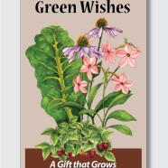 Nursery gift card envelope