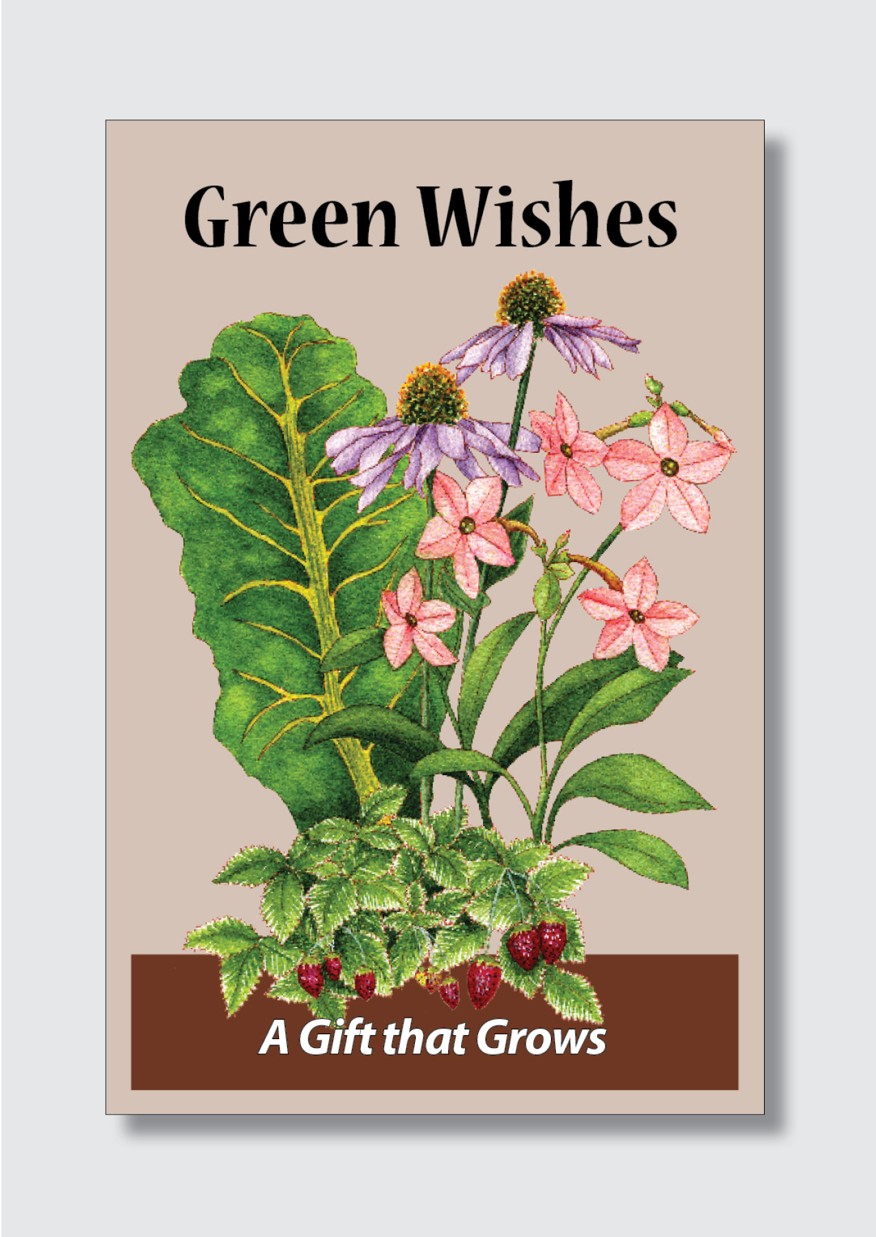gift card env 3