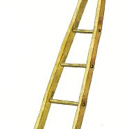 orchard ladder