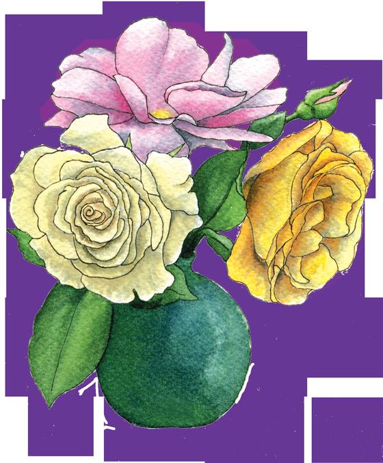 roses-in-vase