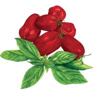 San Marzano tomatoes + Genovese basil