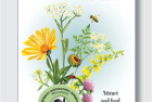 Nursery seed packet