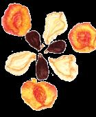 Dried Pears, Peaches & Figs