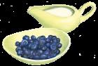 Blueberries + cream