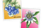 blueberry + passionflower stamps